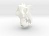 Hippo River Horse Skull 3d printed