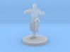 Human Martial Arts Adept 3d printed