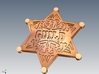 15 X Law enforcement Guild Star 20mm. 3d printed