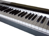 2 Octaves Piano Teaching Tool 3d printed
