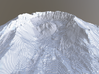 Mount St. Helens Contour Map (10 Meter) - Large 3d printed