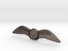 RAA (Recreational Aviation Australia) Wings / Brev 3d printed