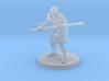 Half Elf Male Monk 3d printed