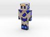 skin_2018052623064684833 | Minecraft toy 3d printed