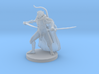 Human Male Two Sword Ranger 3d printed