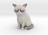 Grumpy Cat 3d printed