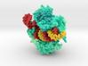 CRISPR Cas13d 6E9F 3d printed
