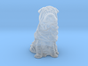 S Scale Shar Pei 3d printed This is a render not a picture