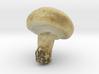The White Mushroom 3d printed