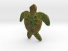 Full Colour Turtle Pendant 3d printed