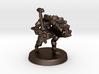 Arjhane (Dragonborn Fighter) 3d printed