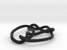 mobius 7_3 knot 360 degree twist 3d printed