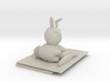 Bunny And Hole 3d printed