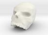 LARGE skull pendant 3d printed