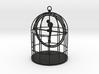 Bird Cage Gimbal 3d printed