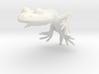 GEROBATRACHUS SOLID 3d printed
