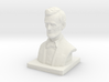 Lincoln Bust TNH 3d printed