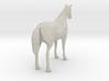 Horse Arabian 3d printed