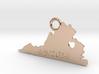 Virginia State 3d printed