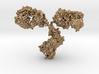 Antibody IgG small 3d printed