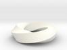 Möbius Strip (4,3) 3d printed