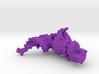 tRNA (small) 3d printed