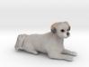 Custom Dog Figurine - Maggie 3d printed