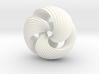 Mobius Knot 3d printed
