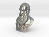 "Charles Darwin 3"" Bust 3d printed"