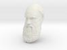 "Charles Darwin 15"" Life Size Head, Wall Mount 3d printed"