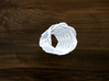 Turk's Head Knot Ring 12 Part X 6 Bight - Size 0 3d printed