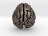 Orangutan Brain 3d printed