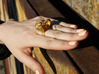 Pumpkin Ring Size 8 3d printed Gold