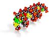 DNA Molecule Model GCG ACU GGU UAC CCG GUC G Huge 3d printed
