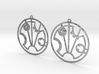 Scarlett - Earrings - Series 1 3d printed