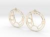 Sienna - Earrings - Series 1 3d printed