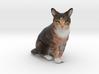 Custom Cat Figurine - Ohki 3d printed