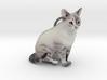 Custom Cat Ornament - Roxy 3d printed