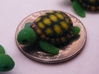 Concha: Little Turtle (1 piece) 3d printed Full Color Sandstone Turtle on a Coin