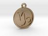 Capricorn/Steinbock Pendant 3d printed
