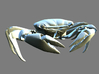 Articulated Crab (Pachygrapsus crassipes) 3d printed Rendering