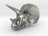 Triceratops Skull - Pendant/Key Fob 3d printed
