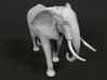 African Bush Elephant 1:32 Walking Male 3d printed