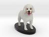 Custom Dog Figurine - Miso 3d printed