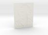 Leonhard Euler Shadowgram 3d printed