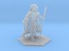 Dragonborn Sorcerer 3d printed