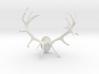 Red Deer Antler Mount - 50mm 3d printed
