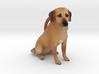 Custom Dog Ornament - Peanut 3d printed