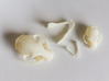 Mini Cat Skull Sculpture 3d printed Mini and Standard model with parts layed out.