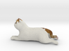 Laying Exotic Shorthair Cat 3d printed